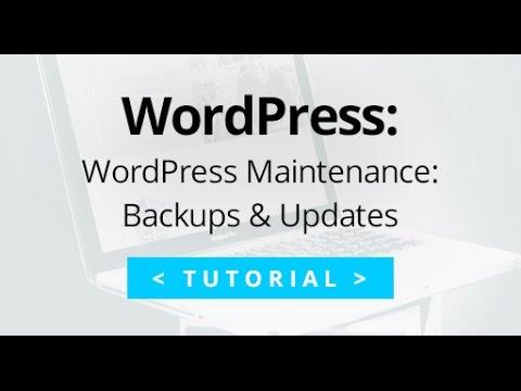 WordPress Maintenance Tutorial: Plugin Updates and backups using Backup Buddy