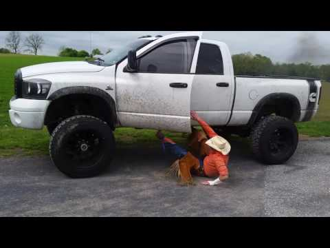 How to be a real bull rider.