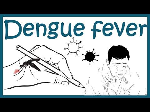 Dengue virus and Dengue pathophysiology