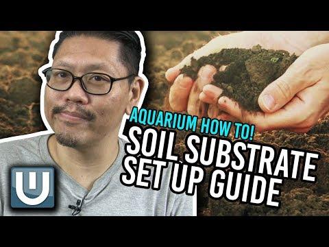 Soil Substrate Aquarium Setup Guide AKA Dirt a Tank