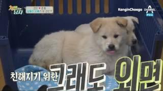 [Vietsub] 160311 Man Who Feeds Dog E13 - Kangin & Chunhyang 6