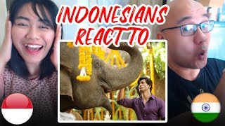 Indonesians React To JUNGLEE Official Trailer | Vidyut Jammwal, Pooja Sawant, Chuck Russell