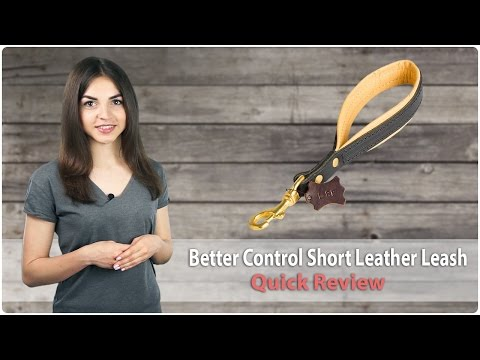 Short Leather Dog Leash for Better Control - Quick Review