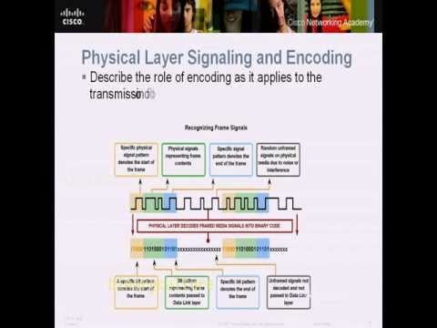 CCNA 1  PHYSICAL LAYER ISO Fundamentals CHAPTER 8