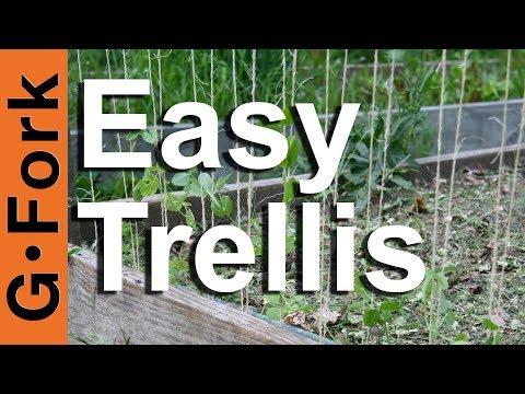 How to make a trellis - GardenFork.TV