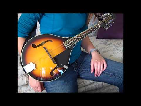 Beginner Mandolin: What I learned in 1 one week of practicing