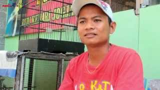 Inspirasi Breeding : Produk Rudi Kenari Jogja ( Rkj Bf ) Sukses Bungkam Redy Cup Jogja Download Mp3 Mp4 3GP HD Video