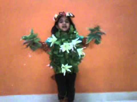 Tree fancy dress.mp4
