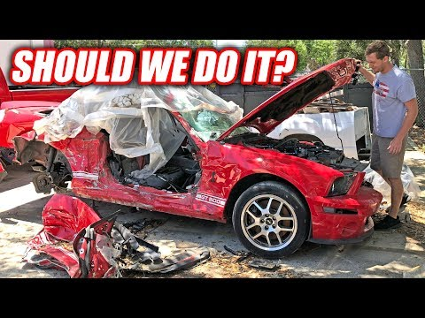 WELL DANG! Found a CHEAP Wrecked GT500 For Project Neighbor!