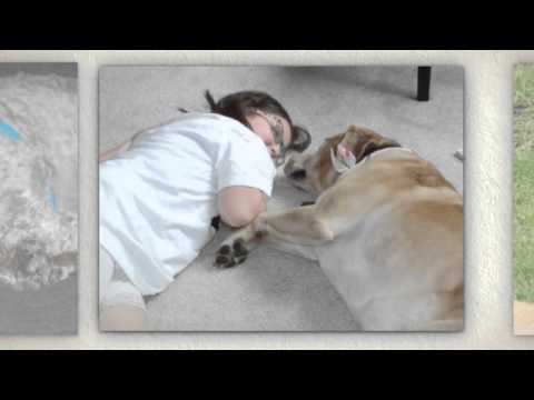 how much is a dog sitter|980-229-0349|Mooresville NC 28115|overnight dog boarding|