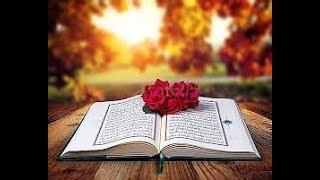 Quran Recitation 10 Hours