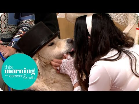 Xxx Mp4 Woman Marries Her Dog Live On This Morning This Morning 3gp Sex