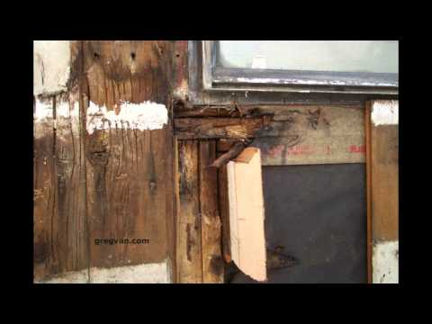 Wood Rot Near Window - Wood Siding Damage