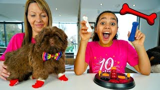 Testing Weird Dog Toys And Gadgets With Tiana
