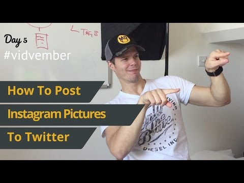 #Vidvember How To Post Instagram Images To Twitter - Day 5