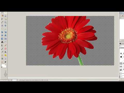 How to remove the White Background of an image in GIMP ( JPEG to PNG )