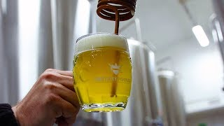 Download Uneticky Pivovar: world class open-fermented lagers | The Craft Beer Channel Video