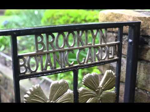 Brooklyn Botanic Garden Wedding: Congratulations Erin and Joe
