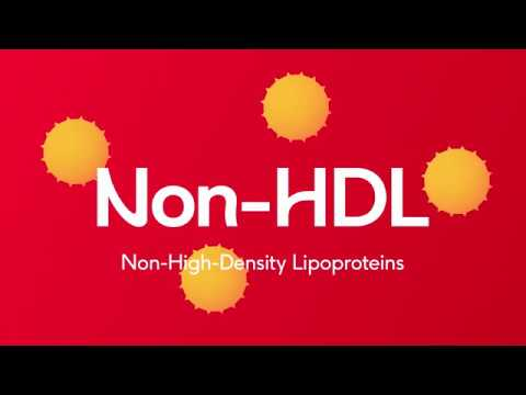 Understanding Cholesterol (Subtitles)