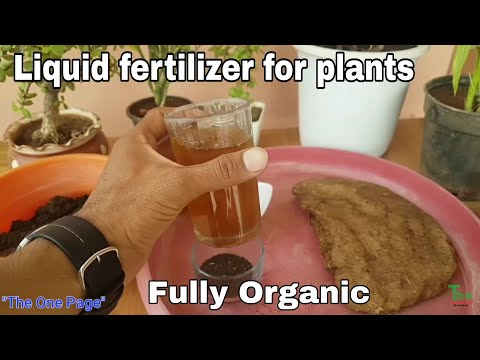 How to make Organic liquid Fertilizer at home, Best Fertilizer to Boost Your plant growth