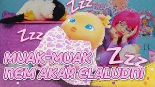 Muak-Muak nem akar aludni - Bellies Babák