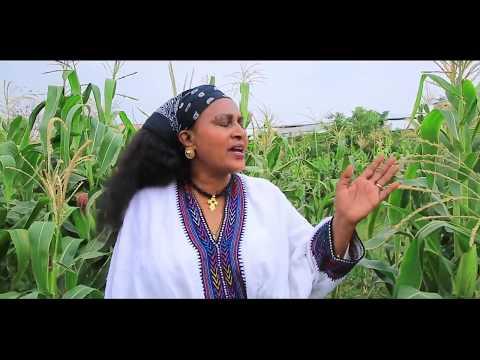 Shumendi G/maryam -Mbrakawi tsehay (Afar)- New Ethiopian