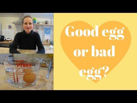 Good egg or bad egg?