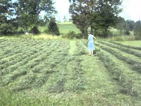 Hay In A Day - Part 1