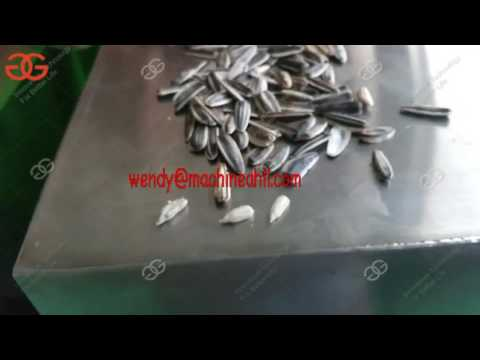 Automatic Sunflower seed roasting machine | Machines For Processing Sunflower Seeds