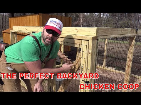 BUILD THE PERFECT CHICKEN COOP!!