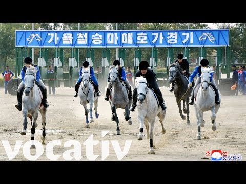 Racetrack Gambling Come To North Korea As Sanctions Hurt Economy