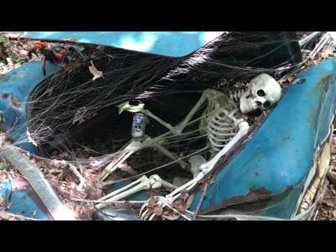 The Haunted Car in Patapsco State Park