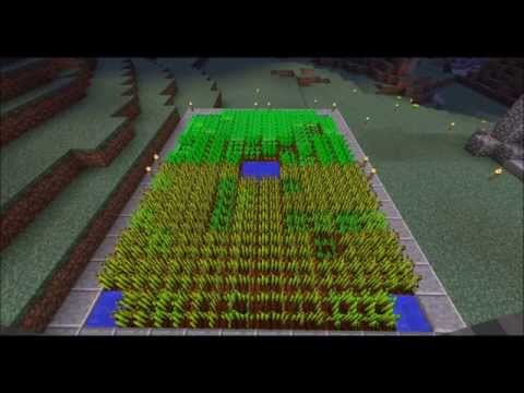 Minecraft Extra: Wheat/Carrot/Potato Time-lapse