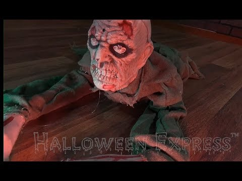 Animated Crawling Zombie//props & decorations