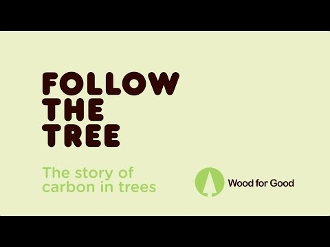 Wood for Good - The Story of the Tree