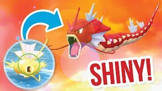CATCHING SHINY MAGIKARP & EVOLVING SHINY GYARADOS - Pokémon Let