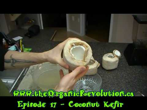 How to make the Body Ecology Coconut Kefir