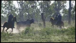 Mustering In Burdekin