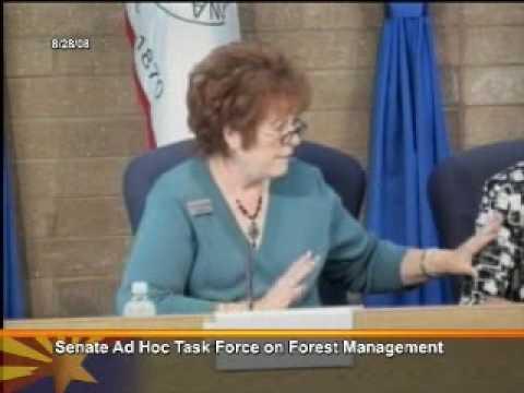 Senate AdHoc Task Force