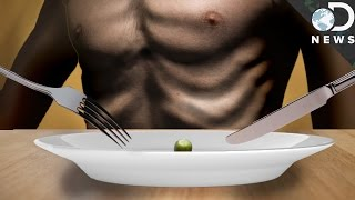 What Does Starvation Do To The Body?