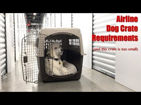 Flying Overseas With Your Dog - Crate Size Requirements