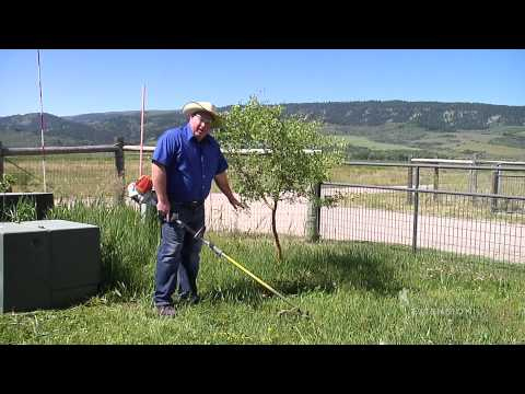 Weed Eating Precautions & Techniques | From the Ground Up