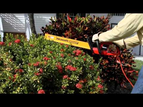 Homelite 22 in Hedge Trimmer.mp4