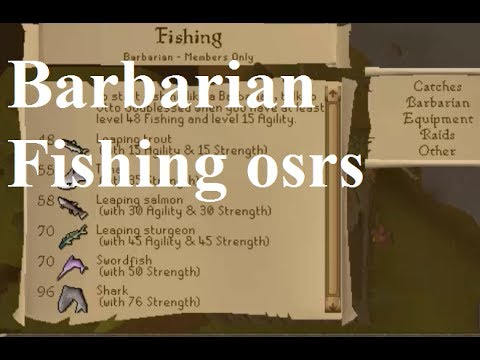 GUIDE how to do Barbarian Fishing - osrs Old School Runescape