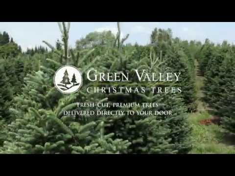Green Valley Christmas Trees - Fresh-Cut Christmas Trees Delivered To Your Door