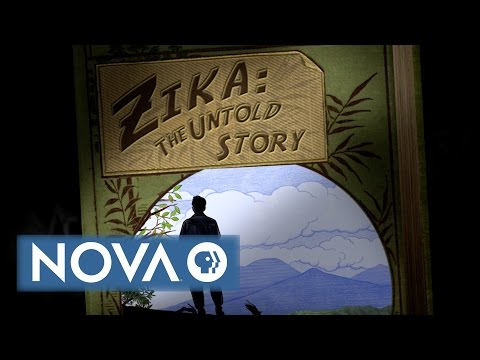 Zika: The Untold Story
