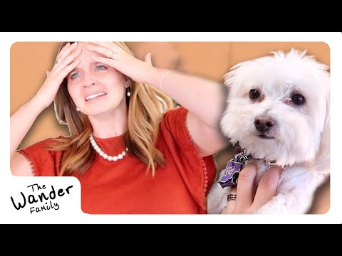 LOST DOG PRANK!! HUSBAND MAKES WIFE CRY!!