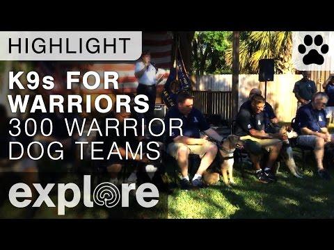 300 Warrior Dog Teams Celebration - Live Cam Highlight