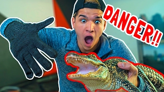 UNRIPPABLE GLOVE vs BABY ALLIGATOR!!
