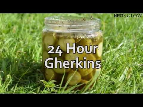 24 Hour Pickled Gherkins - Healthy Recipe
